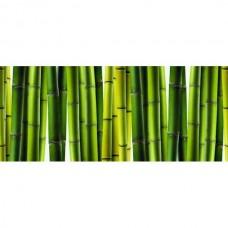 Dekor Szklany Bambus 25x60