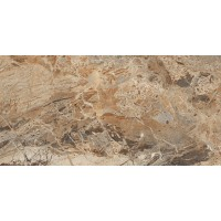 BRECCIA BROWN POLISHED 600X1200 G.1
