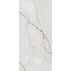 Mercedario Grey Polished 60x120 g.I